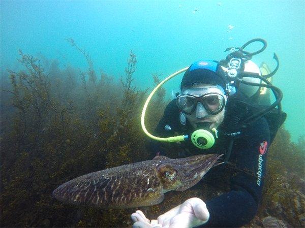 Buceo en la Costa de la Vela