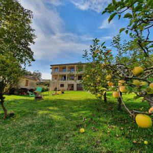 Apartamentos Ría de Aldán manzanas