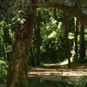 Arco de la Condesa Bosque