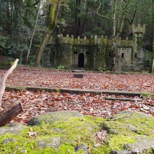 Castillo Bosque Encantado