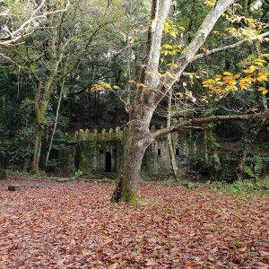 Castillo Bosque Encantado Aldan