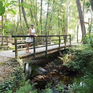 Puente Ruta Molinos Rio Orxas