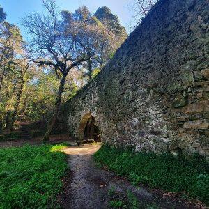 Arco de la Condesa Bosque Aldan