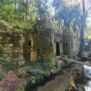 bosque encantado y castillo de aldan