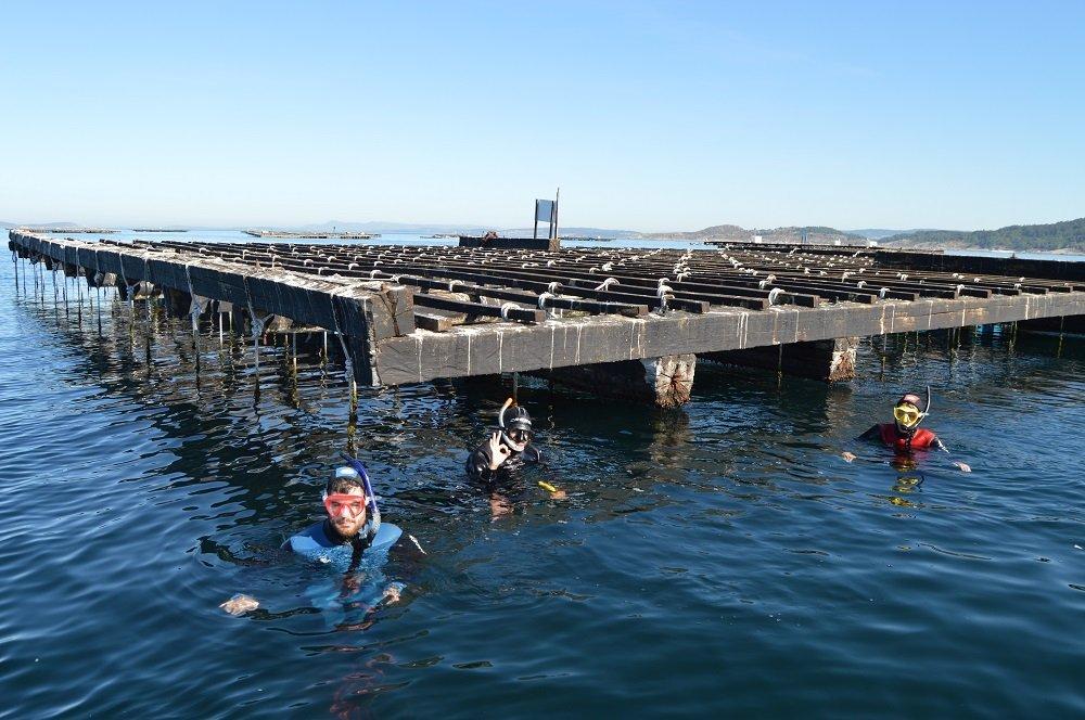Snorkel en Batea