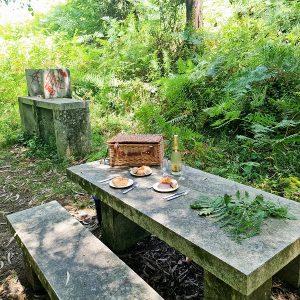 comer al aire libre bosque encantado