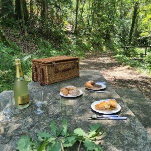 picnic bosque encantado