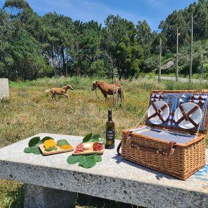 picnic cabo udra