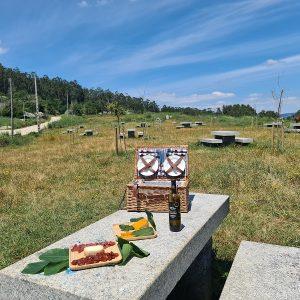 picnic udra