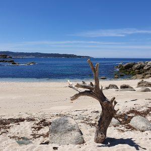 playa mourisca udra